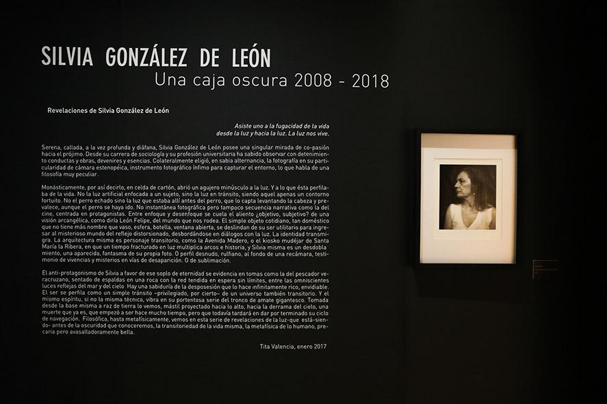 PME-Arte-Silvia-Glz-de-Leon-1